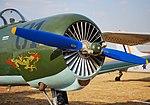 Nanchang CJ-6A, Heidelberg, South Africa 02.jpg