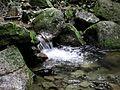 Natinal park stream.jpg