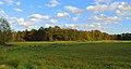 Naturschutzgebiet Seester Feld 05.JPG