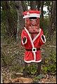 Ned Kelly Santa Claus-02+ (2155801406).jpg