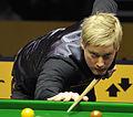 Neil Robertson at Snooker German Masters (DerHexer) 2013-02-02 30.jpg