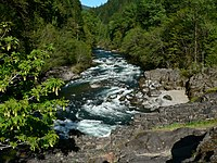Photo of treelined mountain stream