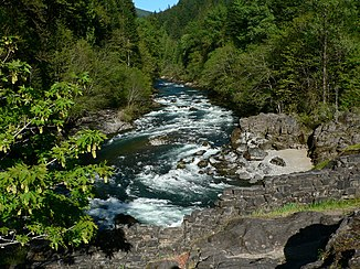 North Santiam River beim Niagara County Park