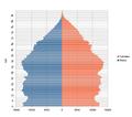 Northern ireland population pyramid.png