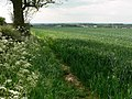 Northwest Leicestershire countryside - geograph.org.uk - 816541.jpg