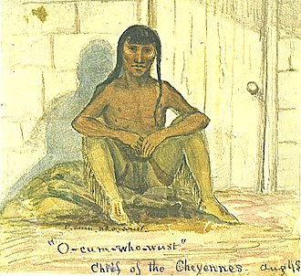 Yellow Wolf (Cheyenne) - O-Cum-Who-Wust, from an August 1845 painting by James W. Albert.