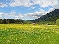Oberstdorf-Rubingeroy06.jpg