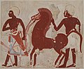Offerings of a Chariot and Horse, Tomb of Userhat MET DT226545.jpg