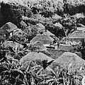 Ogasawara Islands Oki-mura in the first half of the 20th century.jpg