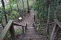 Ohiopyle State Park River Trail - panoramio (138).jpg