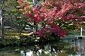 Okayama 2008-11-23 (3241139359).jpg