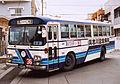 Okinawabus MP117K.jpg