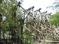 Old Withlacoochee Rail Bridge from Madison County 04.JPG