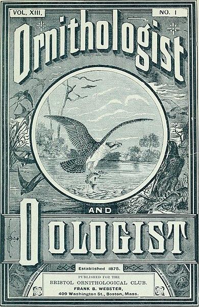 File:Ornithologist and oist (1888) (14751439182).jpg
