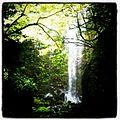 Otobaru Waterfall Beppu.JPG
