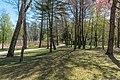 Pörtschach Halbinselpromenade Landschaftspark Buchenhain 15042020 8745.jpg