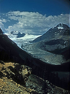 PEYTO GLACIER IN BANFF NATIONAL PARK.jpg