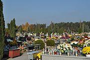 PL - Mielec - cmentarz komunalny - 2011-11-02 - 012.JPG