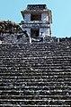 Palenque-18-Palastgruppe-Treppe-1980-gje.jpg