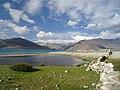 Pangong lake Ladakh 1.jpg
