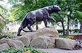 Panther at WPU.jpg