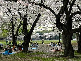 Yoyogi Park - Image: Parc Yoyogi koen (11)