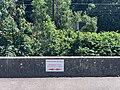 Parcours no-kill (pêche) dans l'Albarine - quai Lamartine à Saint-Rambert-en-Bugey.jpg