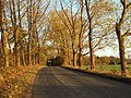 Part of Redricks Lane, close to Redricks Farm - geograph.org.uk - 1022719.jpg