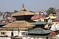 Pashupatinath Temple 2017 131.jpg