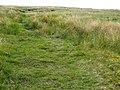 Path On Bleamoor Tunnel - geograph.org.uk - 1371748.jpg