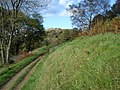 Path above Jubilee Drive - geograph.org.uk - 619667.jpg