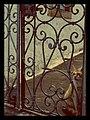 Patmos Patmos 2011 5 (7024863149).jpg