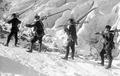 Patrouille auf Skiern - CH-BAR - 3237146.tif