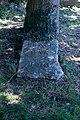 Peace Oak, Sturminster Marshall.jpg