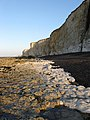 Peacehaven Cliffs - geograph.org.uk - 1204705.jpg