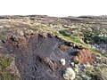 Peat haggs near the county border - geograph.org.uk - 613284.jpg