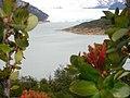 Perito-Moreno (Argentine) - panoramio.jpg