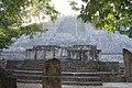 Petén Campechano, Calakmul, Campeche (22011639538).jpg
