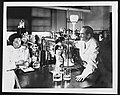 Photograph of Dr Gertrude Elion and Dr George Hitchings Wellcome L0075001.jpg