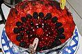 Piškotový dort s ovocným želé 5561-1.jpg