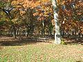 Picnic area belmont lake state park.jpg