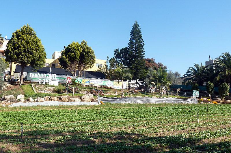 החווה ללימודי חקלאות
