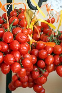 Pomodorino vesuviano