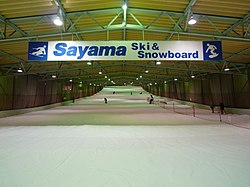 Prince Snow Resort Sayama.JPG