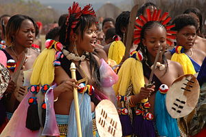 Nguni shield - Image: Princess Swaziland 014