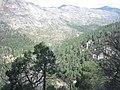Puerto de las palomas - panoramio - isaacpanoramio.jpg