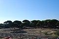 Punta Umbría, 21100, Huelva, Spain - panoramio (4).jpg