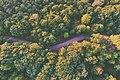 Purple road (Unsplash).jpg
