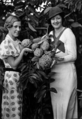 Queensland State Archives 2102 Custard apples Redland Bay c 1934.png