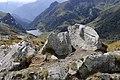 RETTILI SULLE ROCCE - panoramio.jpg